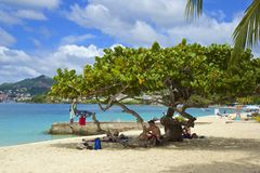 Playa de Grenada, del Caribe Foto de archivo libre de regalías