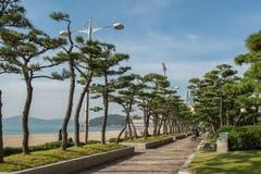 Playa de Haeundae Foto de archivo libre de regalías