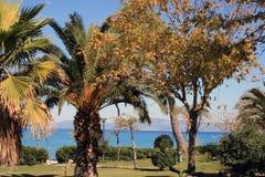 Playa de Hanioti, Grecia Imágenes de archivo libres de regalías