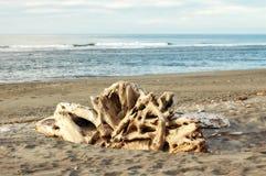 Playa de Hokitika - costa oeste Imagenes de archivo