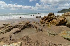 Playa de la agua caliente en Mercury Bay, Nueva Zelanda Fotografía de archivo libre de regalías