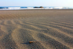 Playa de la arena Foto de archivo libre de regalías