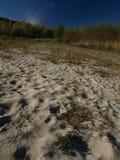 Playa de la arena del río de Buzau Imagen de archivo libre de regalías
