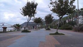 Playa de la avenida de la palma almacen de metraje de vídeo