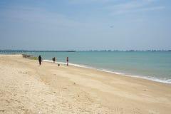 Playa de la costa este de Singapur, caminando con el perro fotos de archivo libres de regalías