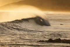 Playa de la espinilla, NZ Imagen de archivo libre de regalías