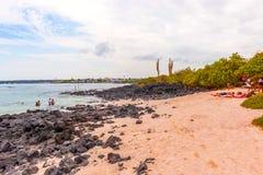 Playa de la Estacion on Santa Cruz island in Galapagos Stock Photos