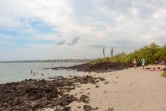 Playa de la Estacion on Santa Cruz island in Galapagos Stock Photography