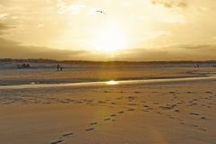Playa de la grúa iluminada por el sol de la tarde Foto de archivo