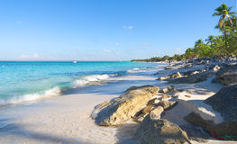 Playa de la isla Catalina - Caribbean tropical sea Royalty Free Stock Image