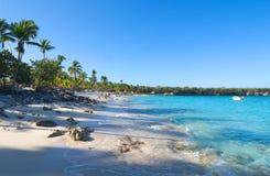 Playa de la isla Catalina - karibiskt tropiskt hav Fotografering för Bildbyråer