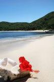 Playa de la isla con el shell Imagen de archivo libre de regalías