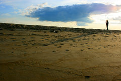 Playa de la isla del ciruelo Imágenes de archivo libres de regalías