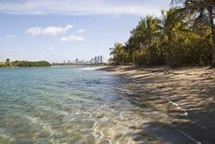 Playa de la isla en la bahía de Biscayne Imagen de archivo