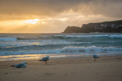 Playa de la mañana Foto de archivo libre de regalías
