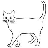 Playa de la naturaleza del ejemplo del diseño de la historieta del icono de Cat Scouts de la forma del bosquejo Fotos de archivo