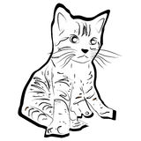 Playa de la naturaleza del ejemplo del diseño de la historieta del icono de Cat Scouts de la forma del bosquejo Foto de archivo