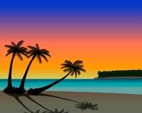 Playa de la palmera en la puesta del sol Imágenes de archivo libres de regalías