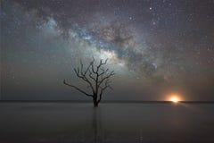 Playa de la plantación de la bahía de la botánica en la noche imagenes de archivo