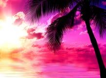 Playa de la puesta del sol fotografía de archivo