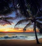 Playa de la puesta del sol con las palmeras y el cielo hermoso foto de archivo