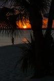 Playa de la puesta del sol de la silueta Foto de archivo libre de regalías