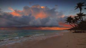 Playa de la salida del sol y del paraíso del mar en la isla tropical Playa tropical con la palmera metrajes