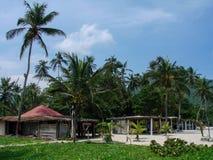 Playa de la selva Imágenes de archivo libres de regalías