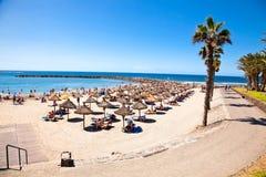 Playa de la Utsikt strand. Tenerife kanariefåglar Arkivfoton