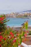 Playa de las Americas, Tenerife Stock Photography