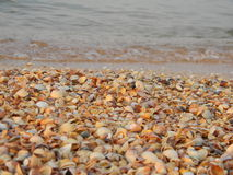 Playa de las cáscaras de Crimea Foto de archivo