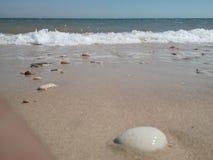 Playa de las rocas imagenes de archivo