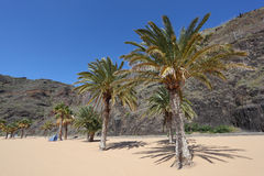 Playa de las Teresitas, Tenerife Royalty Free Stock Images