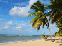 Playa de Las Terrenas, península de Samana foto de archivo libre de regalías