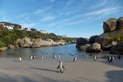 Playa de los cantos rodados Foto de archivo libre de regalías