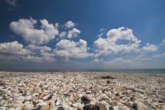 Playa de los shelles Foto de archivo