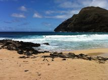 Playa de Makapuu Fotos de archivo