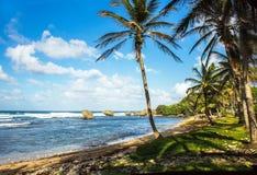 Playa de Martins Bay en la costa este de Barbados fotos de archivo libres de regalías