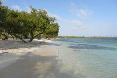 Playa de Mero Fotos de archivo libres de regalías