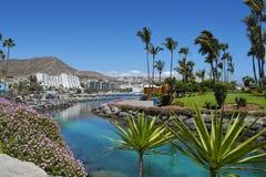 Playa de Mst del fel de Anfi, isla de Gran Canaria, España fotos de archivo libres de regalías