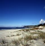 Playa de Nueva Zelandia Foto de archivo