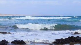 Playa de Playa de Orzola en Lanzarote, islas Canarias almacen de video