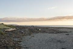 Playa de Paraparaumu Imagenes de archivo