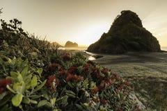 Playa de Piha, NZ Imagen de archivo libre de regalías