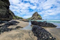 Playa de Piha que está situada en la costa oeste en Auckland, Nueva Zelanda Imagen de archivo libre de regalías