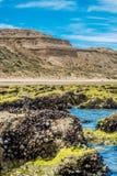 Playa de Puerto Piramides, sol, ondas y arena, día hermoso imagen de archivo libre de regalías