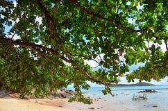 Playa de Rawai de Phuket Tailandia Fotografía de archivo libre de regalías