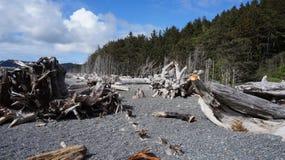 Playa de Rialto, Washington State, los E.E.U.U. Fotografía de archivo libre de regalías