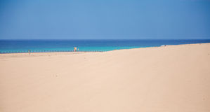 Playa de Sandy cerca de la ciudad de Corralejo Foto de archivo libre de regalías