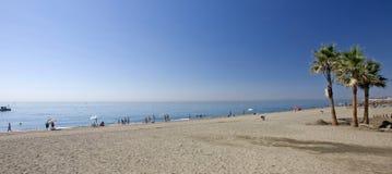 Playa de Sandy con las palmeras en Estepona en España meridional Foto de archivo libre de regalías